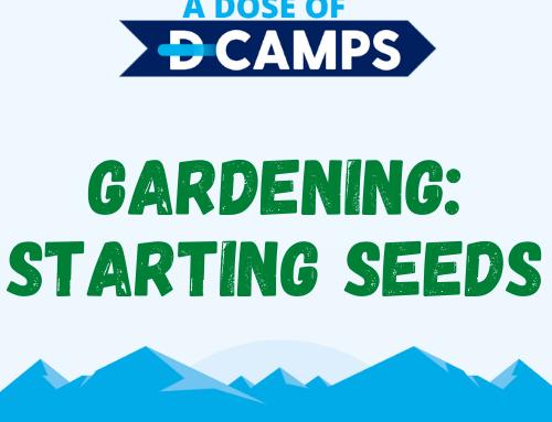 Planting & Starting Seeds