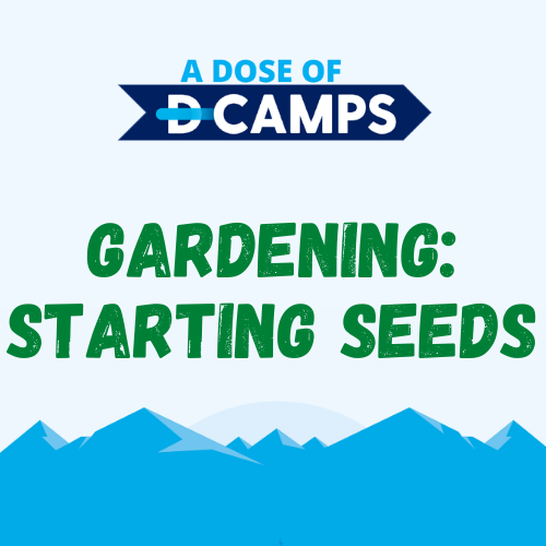 d-camps activity gardening