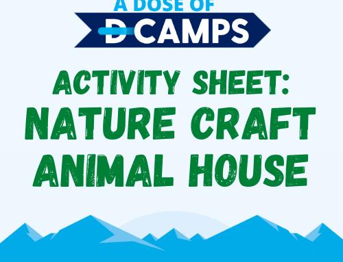 Nature Craft Animal Homes