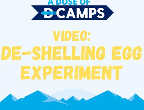 De-Shelling Eggs Experiment