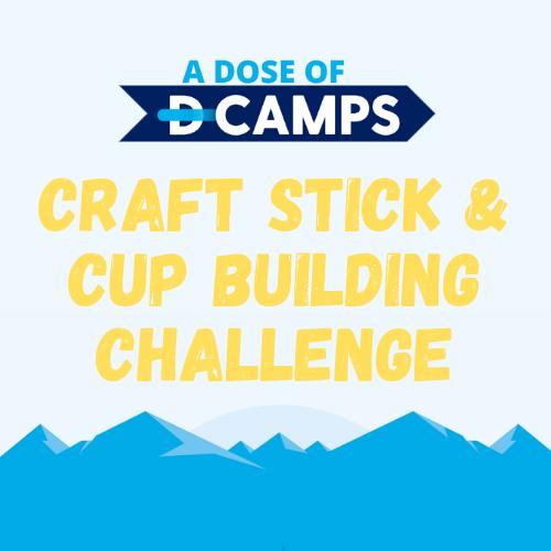 d-camps activity building challenge