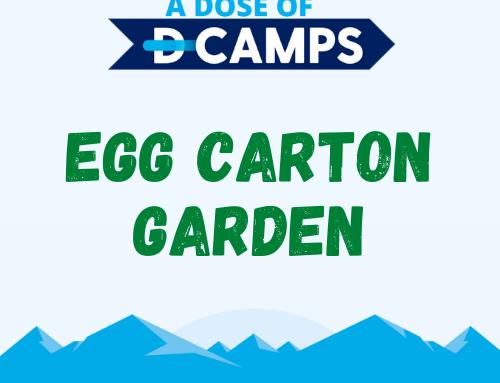 Egg Carton Gardens