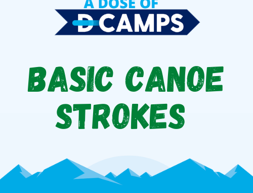 Basic Canoe Strokes